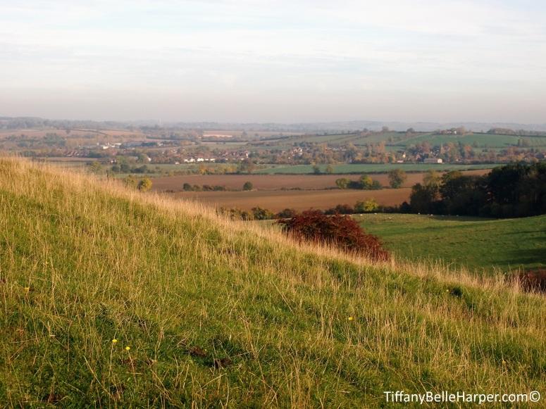 burtondassetthills.jpg