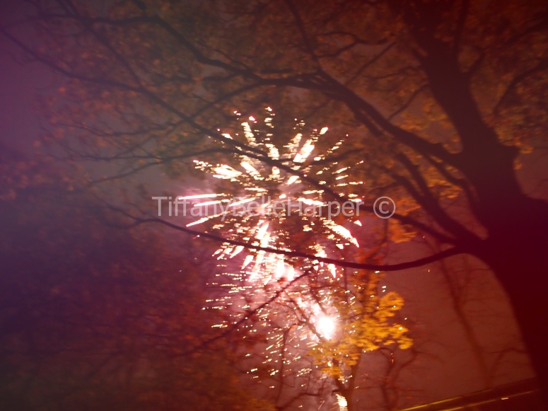 Bonfire Night by Tiffany Belle Harper